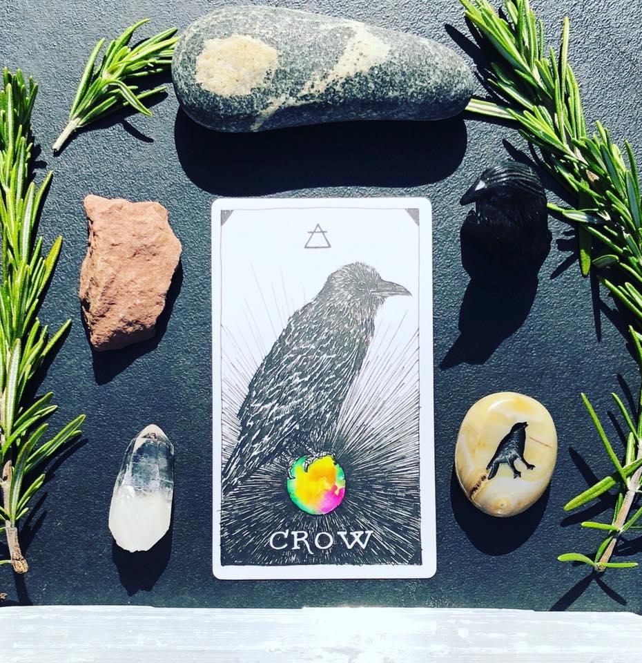 Crow Totem Meaning (Spirit Animal)