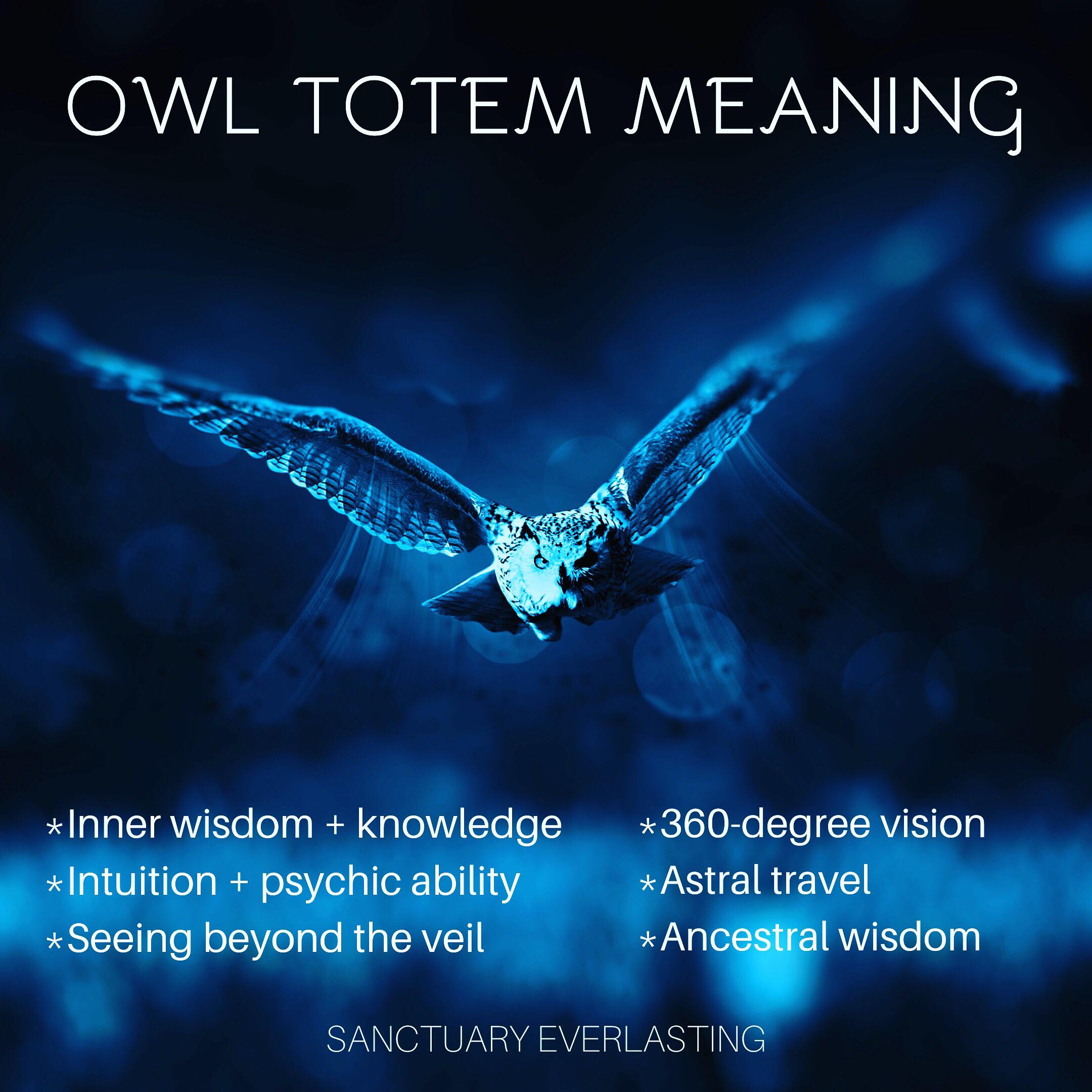 Owl Totem Meaning (Spirit Animal)